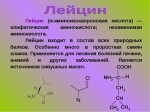 Незамениая аминокислота лейцин